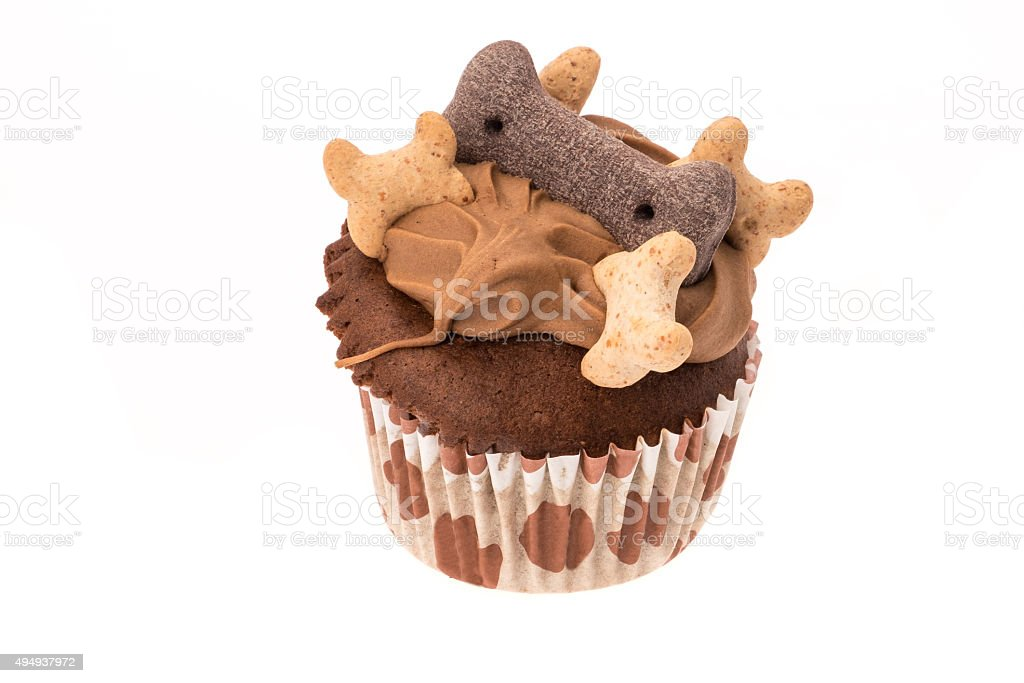 Dog treat muffin cupcake stock photo