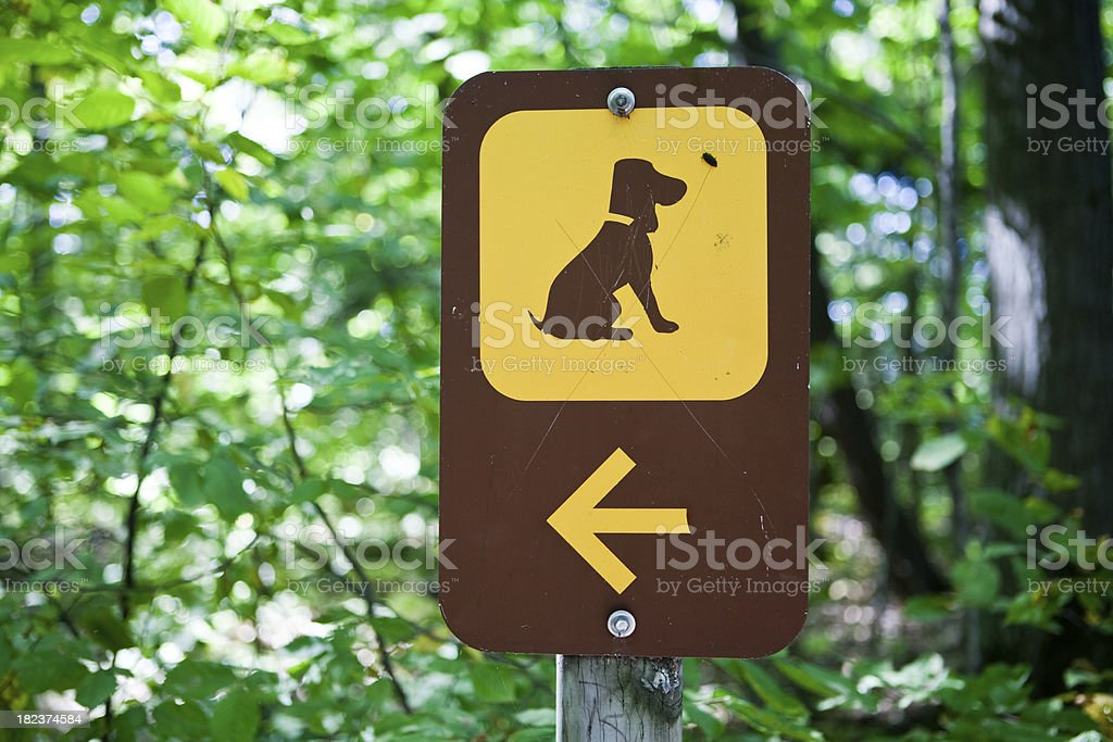 dog walk sign stock photo