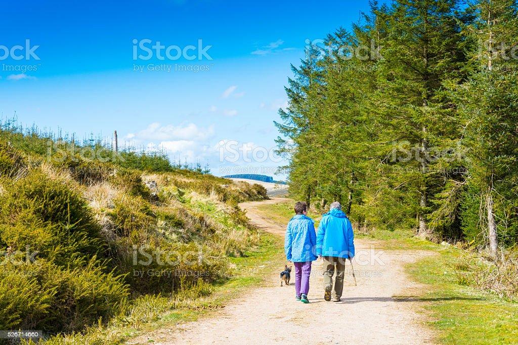 Dog Walking Couple on footpath stock photo