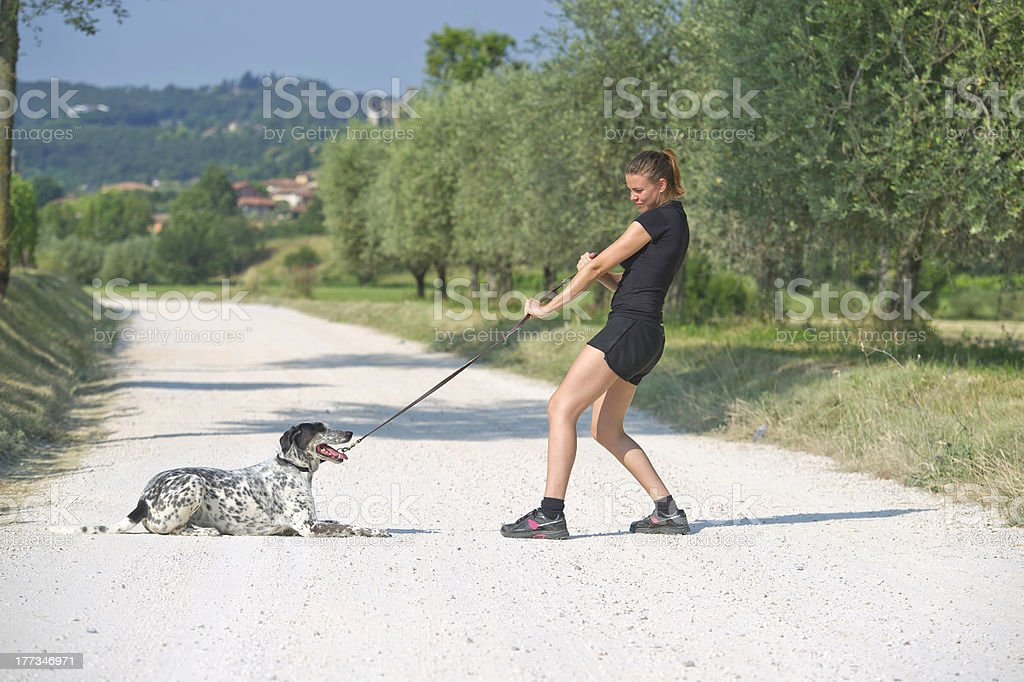 Dog with its owner stock photo