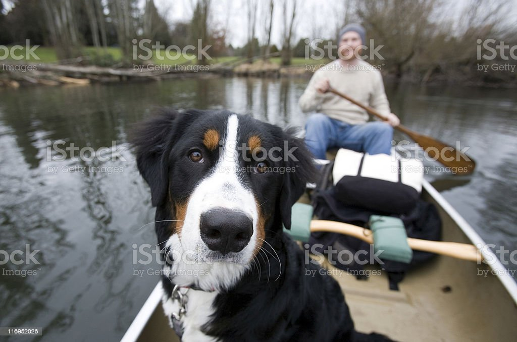 Dog With Owner in A Canoe. royalty-free stock photo