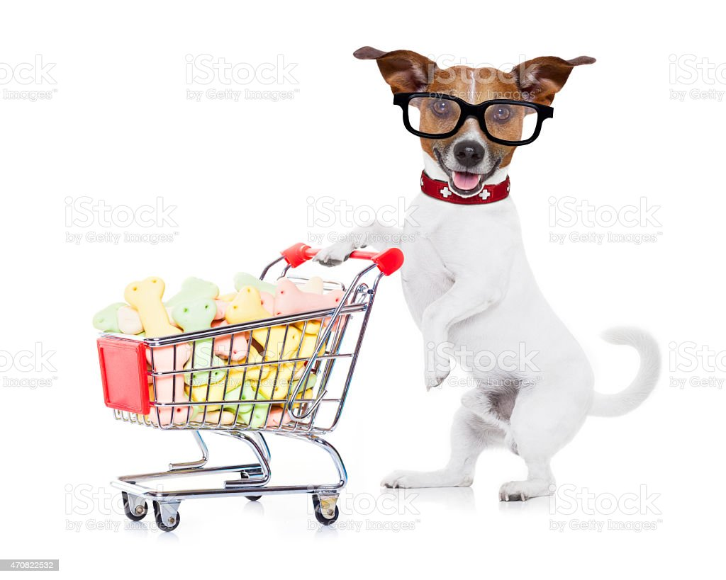 dog with shopping cart stock photo