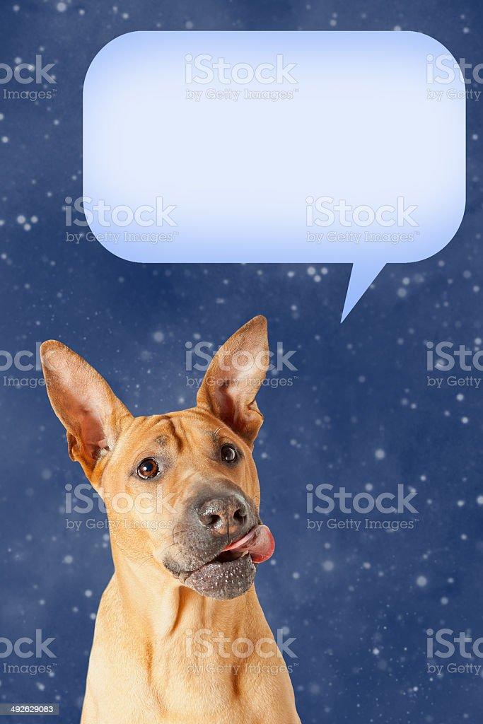 Dog with speech bubble stock photo