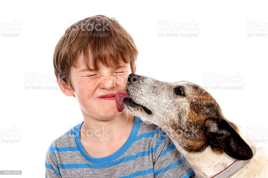 Doggy Kisses stock photo