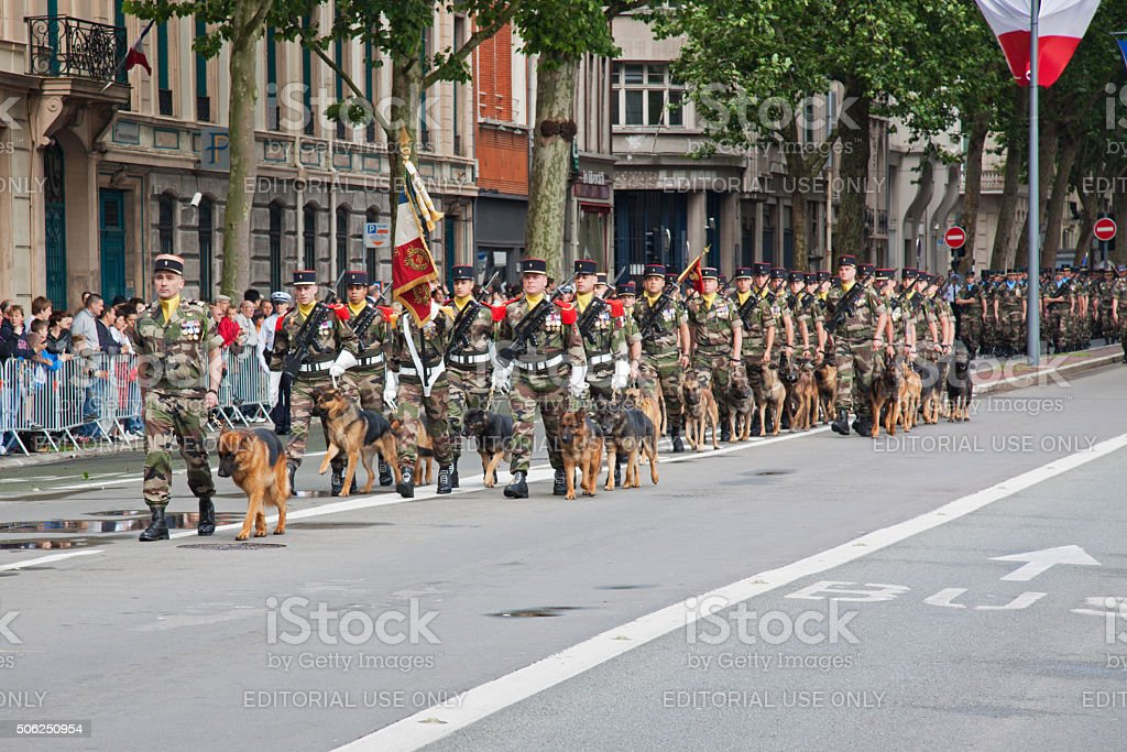Dog-handler corps of the French military on parade, Lille stock photo