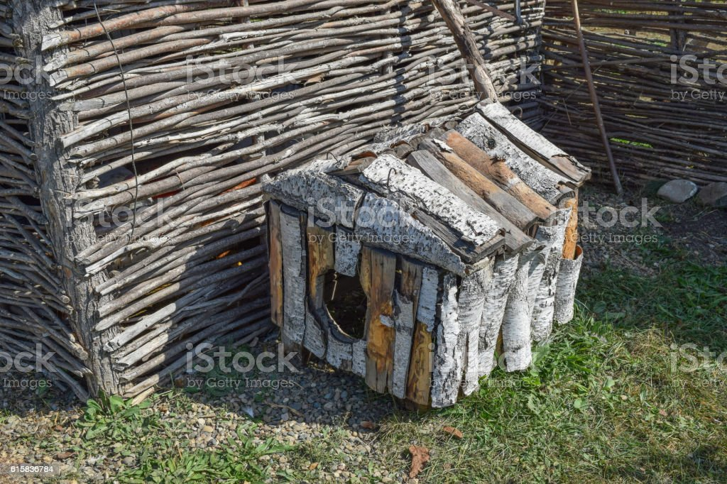 Doghouse birch near woven fence stock photo