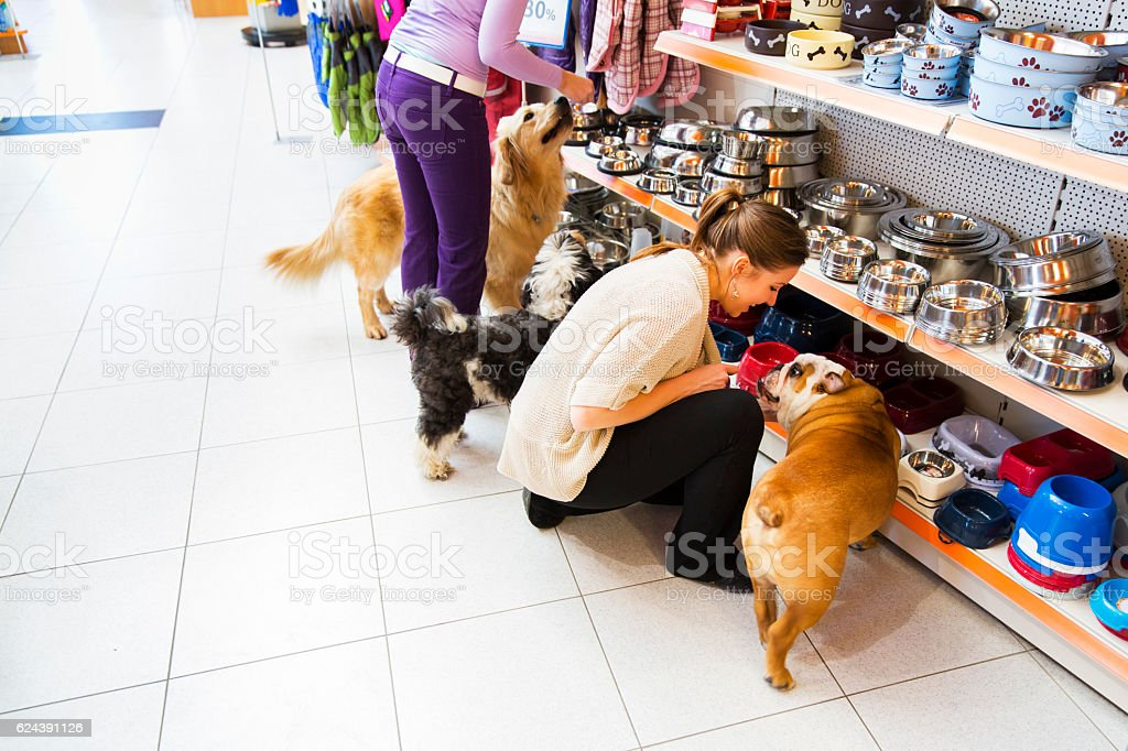 Dogs and his owners in pet store buying new bowl stock photo