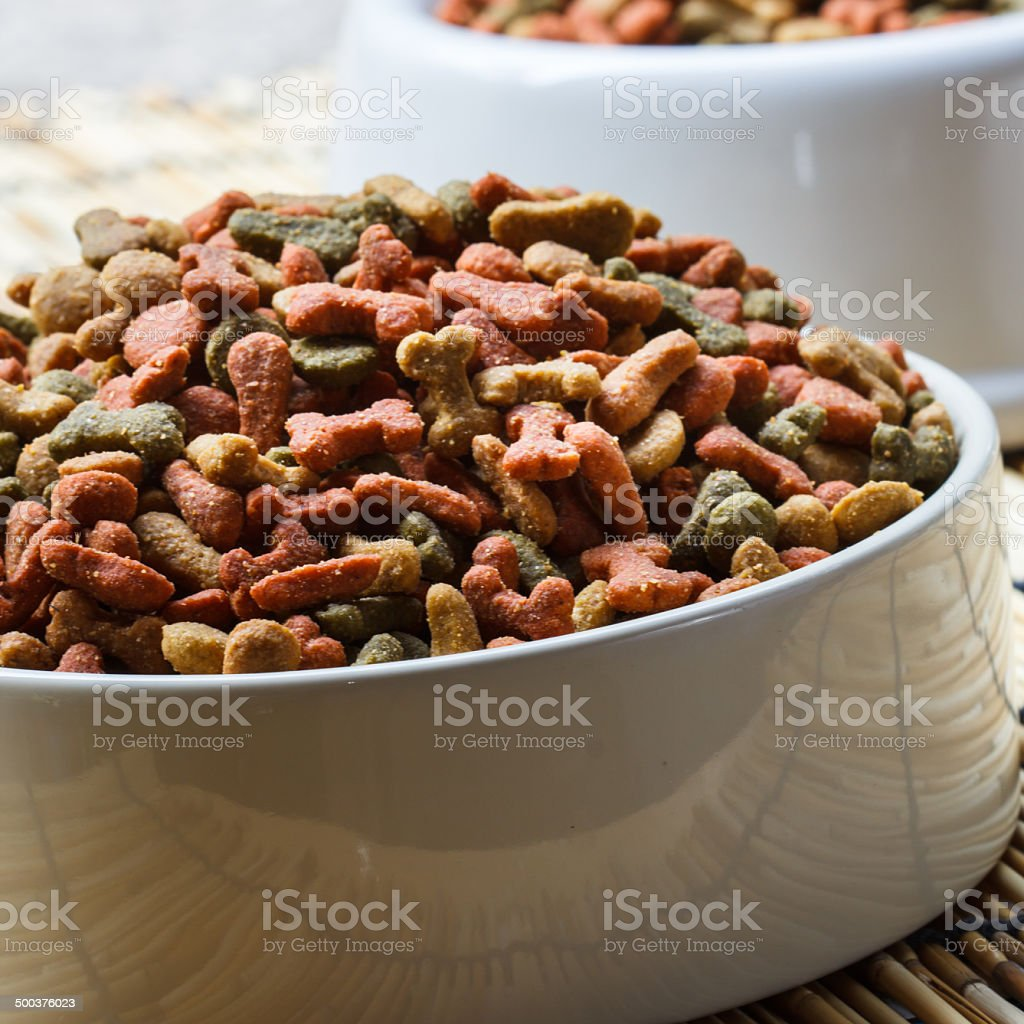 Dogs food stock photo