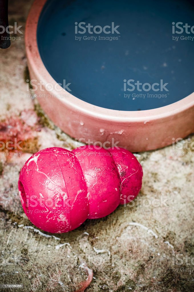 Dogtoy kong covered in fur and saliva next to dogbowl stock photo