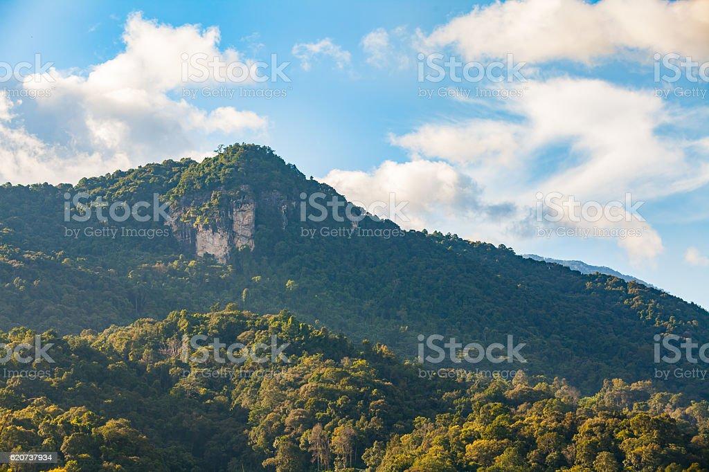 Doi inthanon national park, chiang mai, thailand stock photo