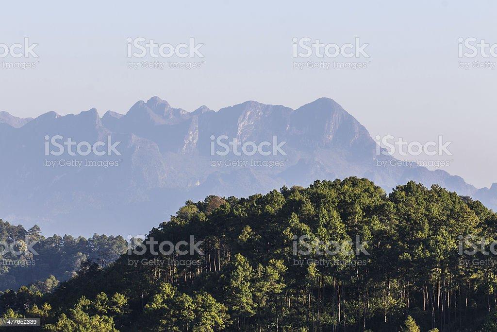 Doi Luang Chiang Dao, View Form Wianghaeng Chiangmai Thailand royalty-free stock photo