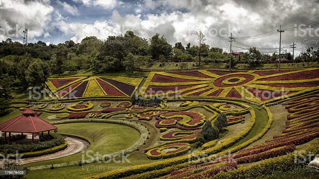 Doi Mae Salong foto stock royalty-free