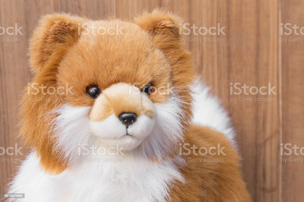 doll dog close up toy cute beautiful on wooden  floor background stock photo