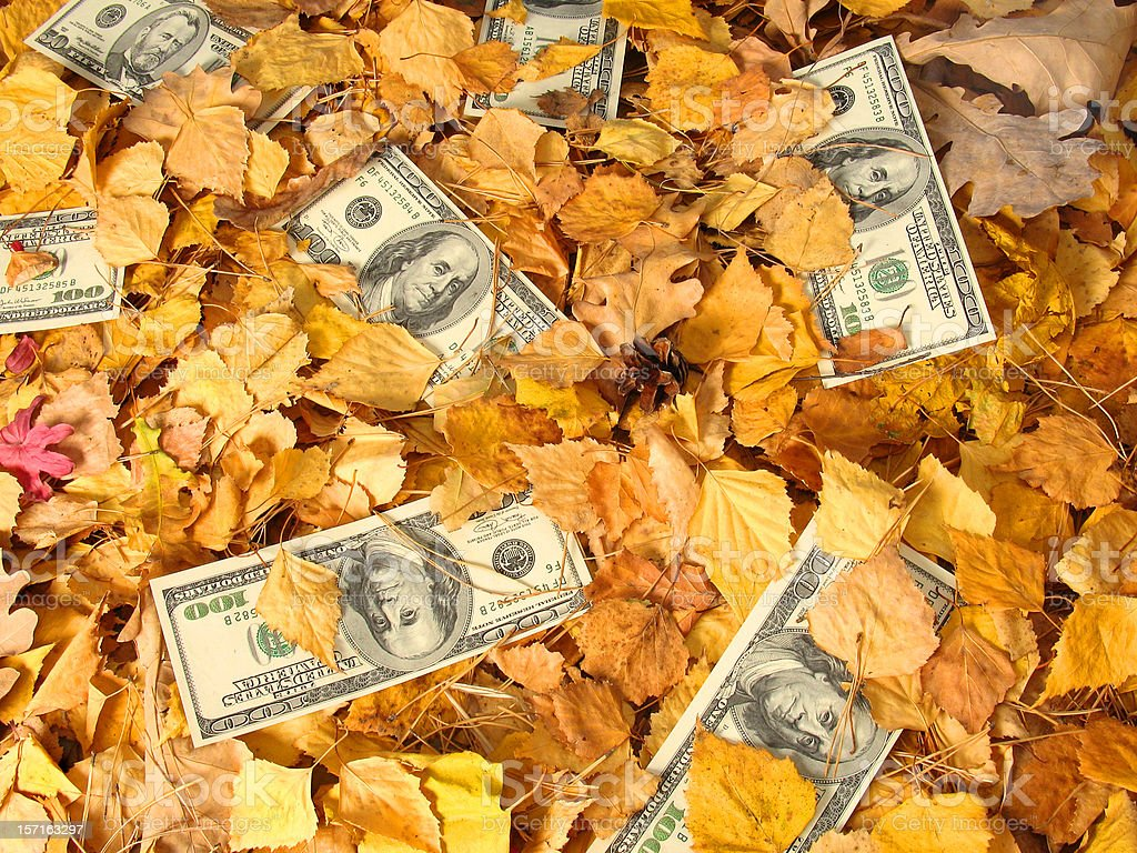 Dollar Litter I stock photo