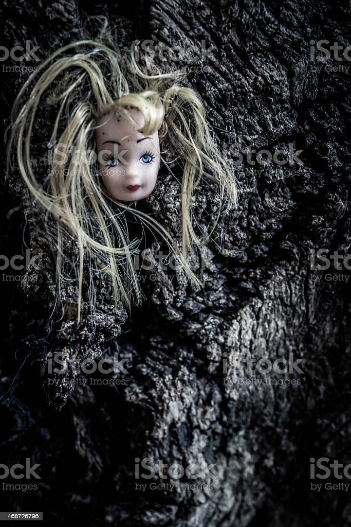 Doll's Head Hanging From Tree With Thin Hair stock photo