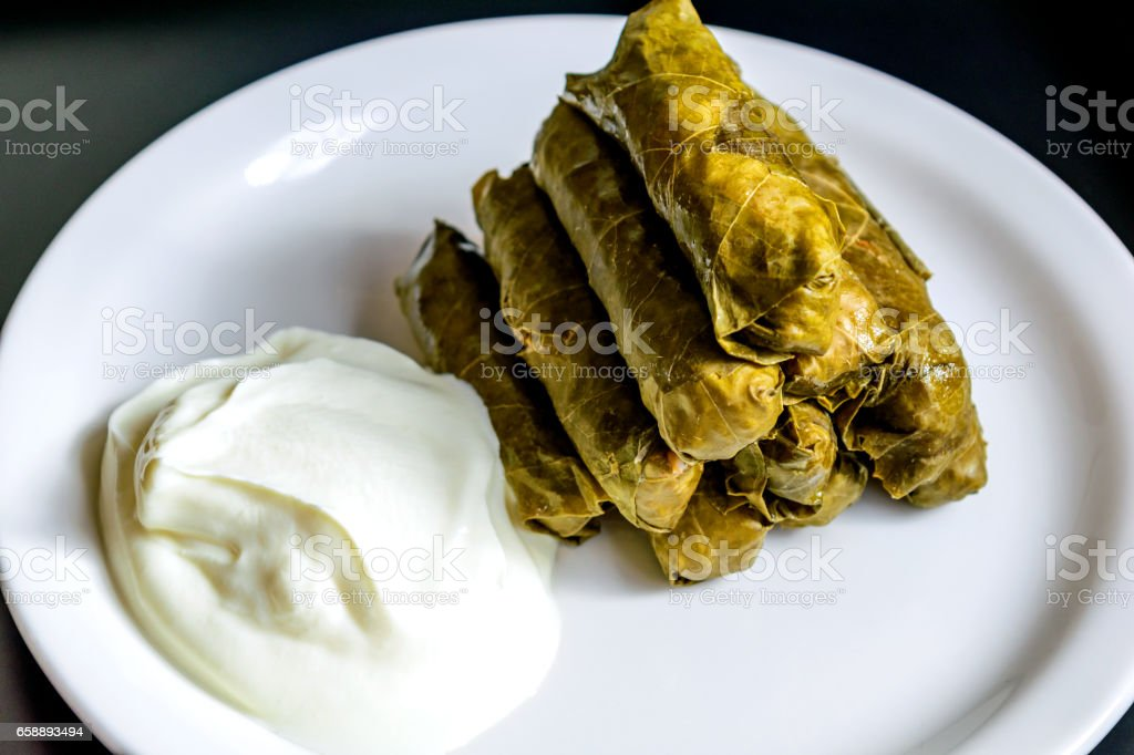 Dolma and natural yogurt stock photo