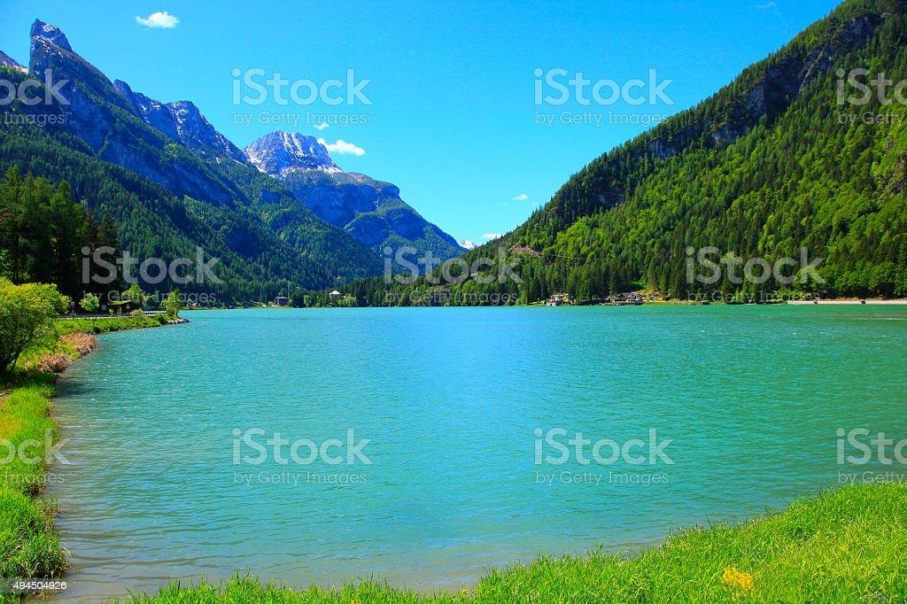 Dolomites italian alpine Alleghe lake, Mount Civetta, Green pine trees stock photo