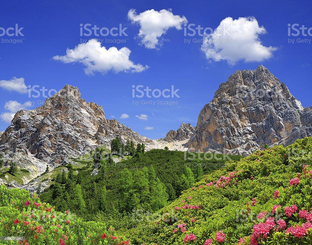 Dolomites - Italy stock photo