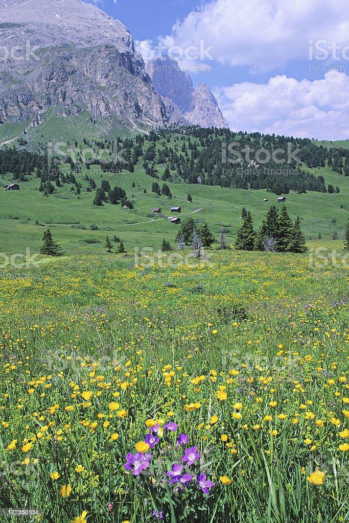 Dolomites Landscape royalty-free stock photo