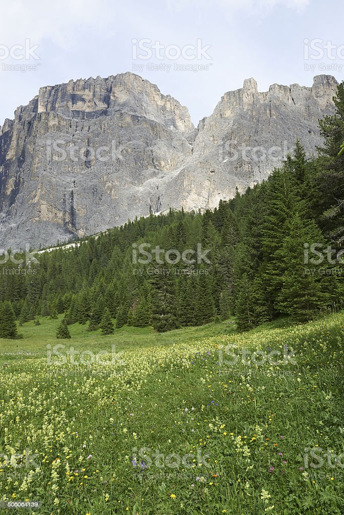 Dolomites Meadow and Peak stock photo