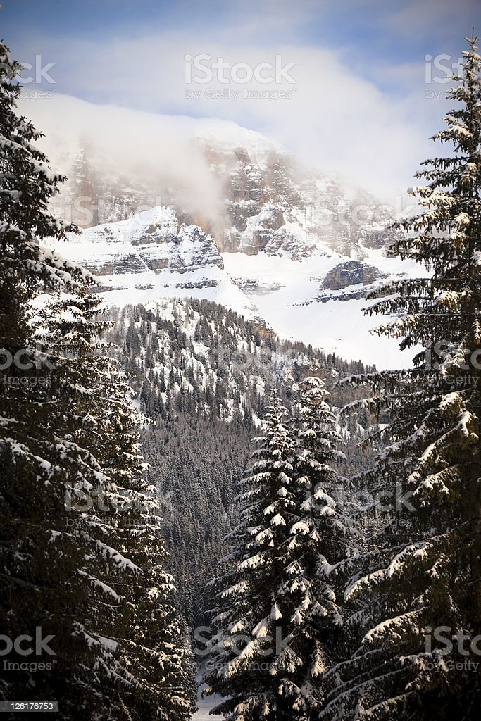 Dolomites of Brenta, Italian Alps, Madonna di Campiglio royalty-free stock photo