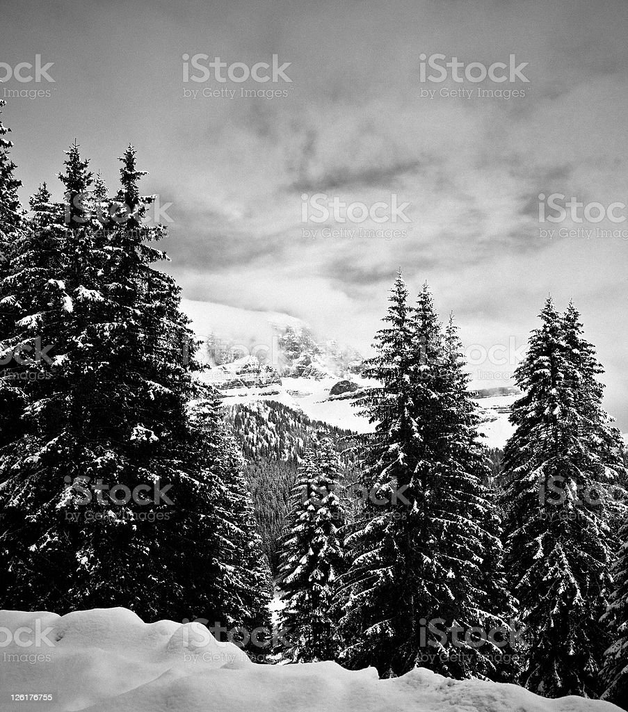 Dolomites of Brenta, Italian Alps, Madonna di Campiglio stock photo