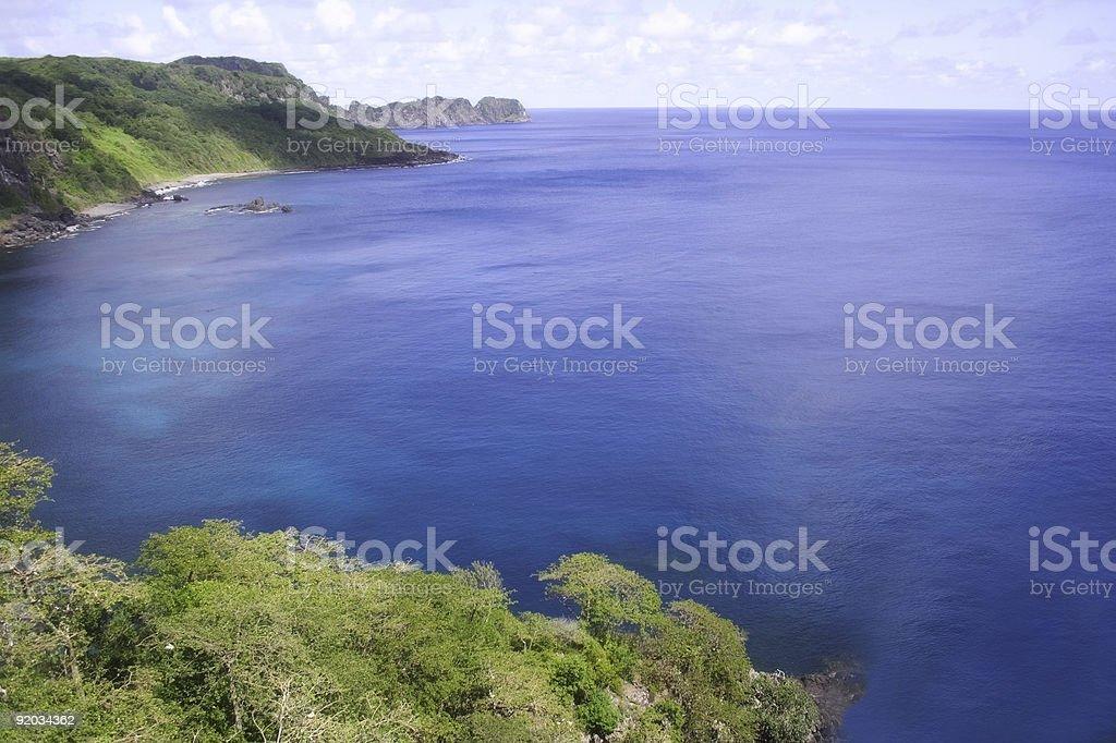 Dolphin Bay royalty-free stock photo