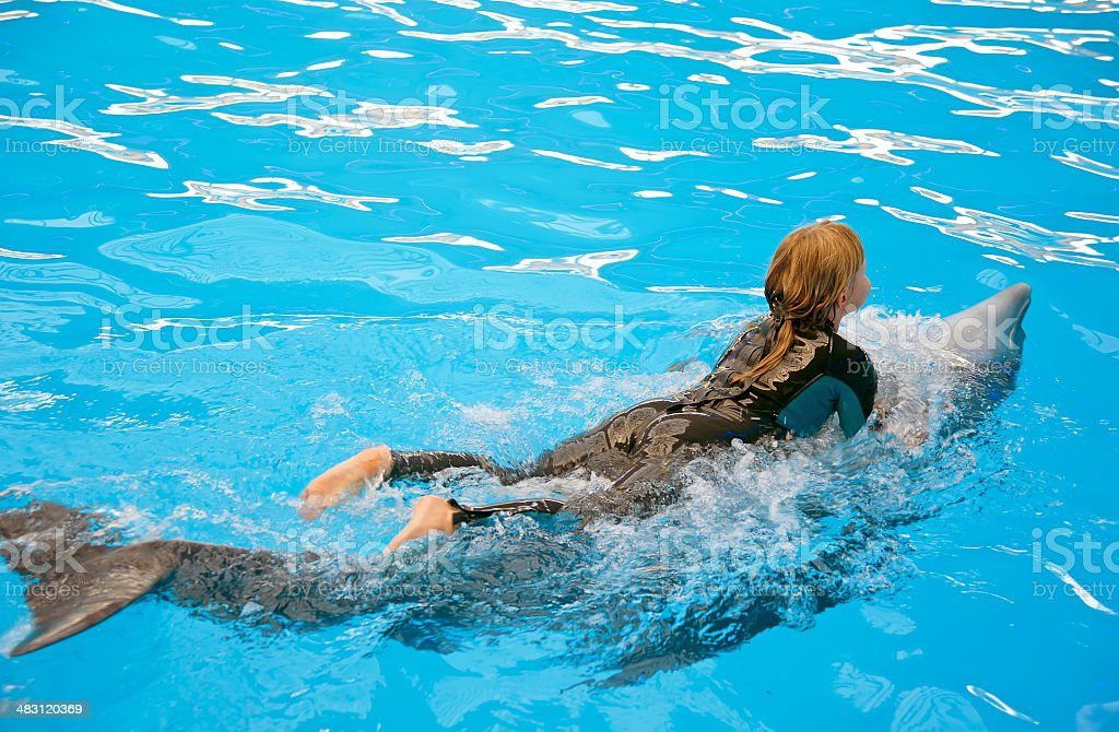 Dolphin riding at theraphy session stock photo