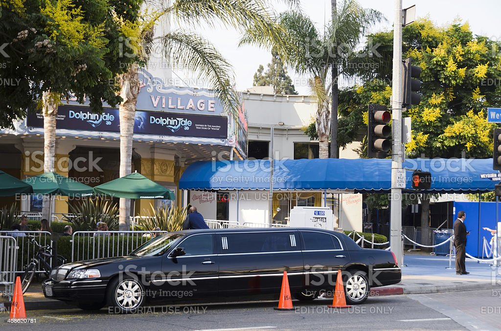 Dolphin Tale - Limousine at Film World Premiere stock photo