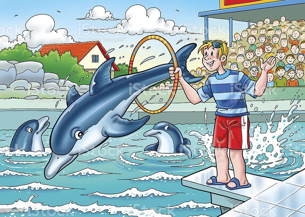 Delfine stock photo