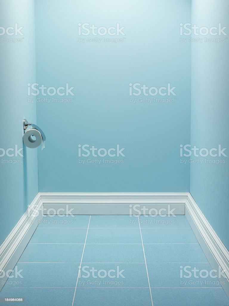Domestic epmty toilet royalty-free stock photo