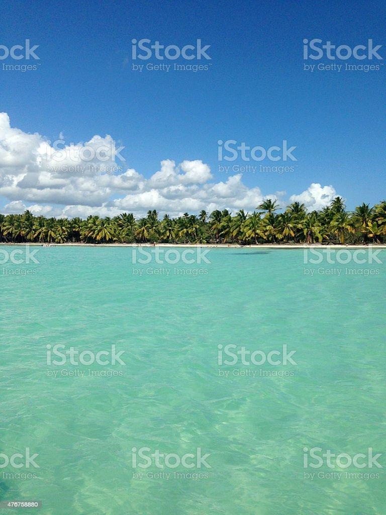 Dominican Beach Paradise stock photo