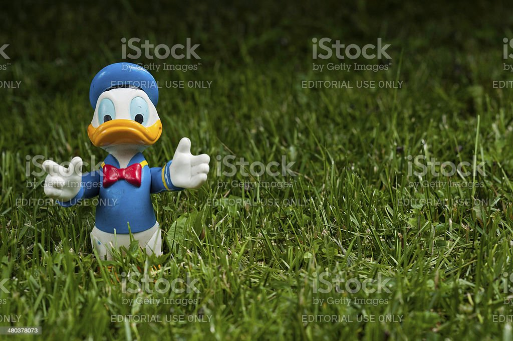 Donald Duck opened arms on green grass stock photo
