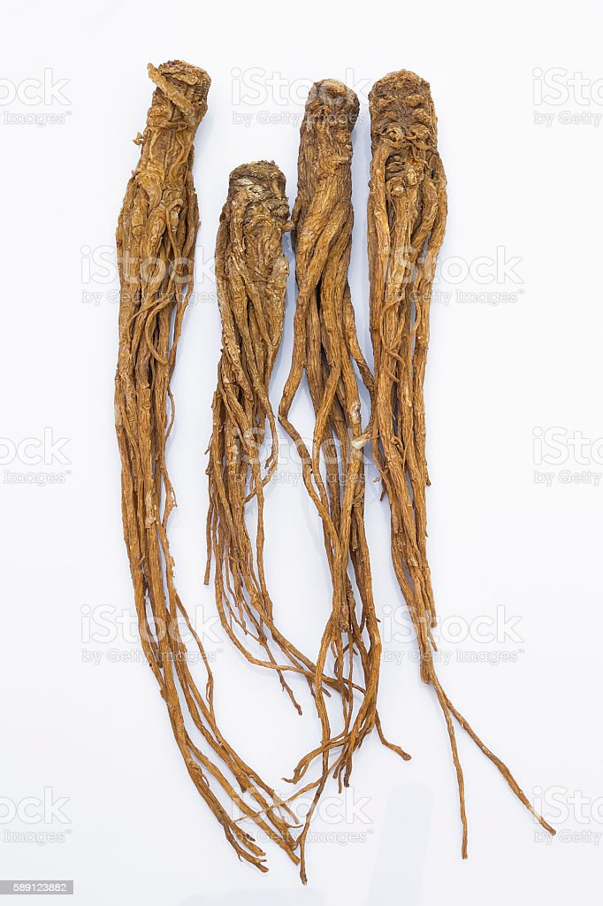 Dong Quai (Angelica sinensis), also known as Dang Gui Ginseng stock photo