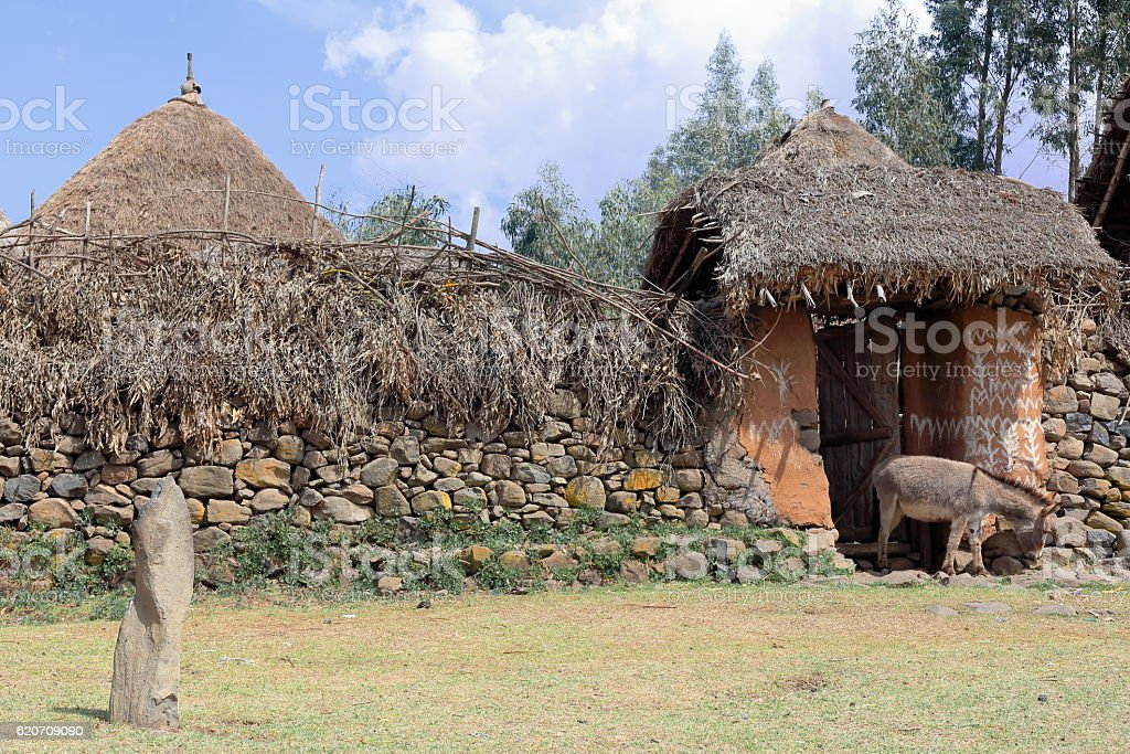Donkey at the gate-walled settlement of the Oromo people-Ethiopia. 0524 stock photo