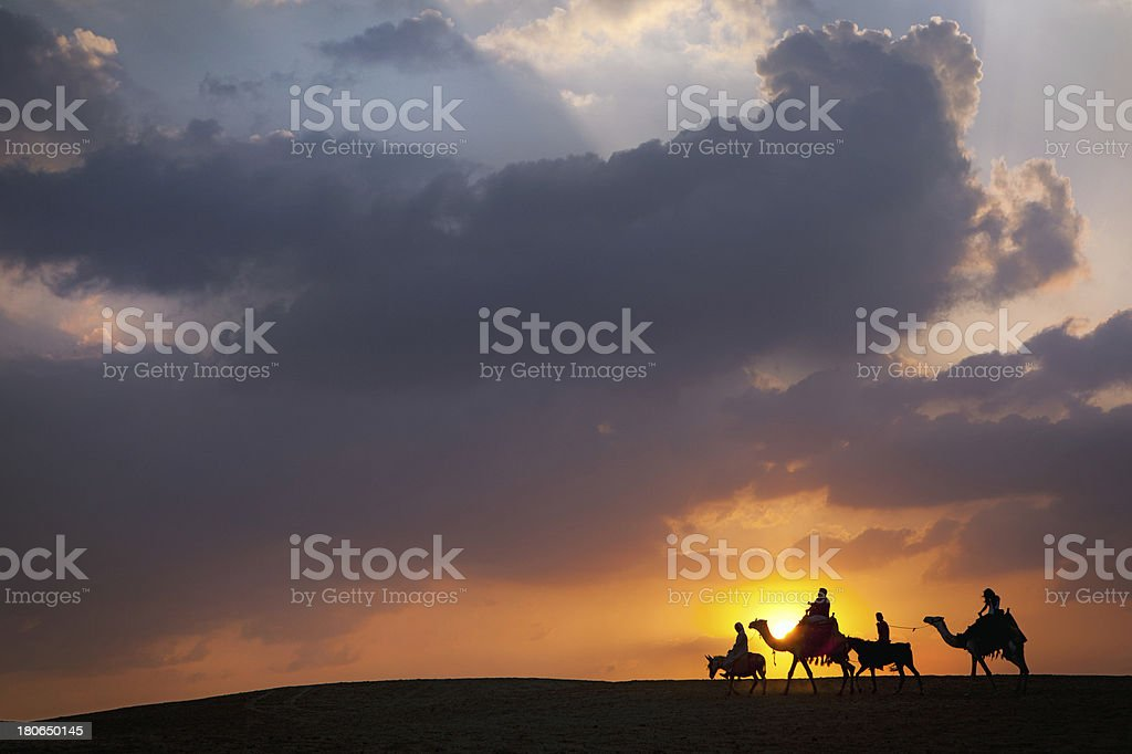 Donkey, Camel Times Two royalty-free stock photo