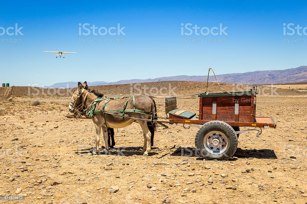 Donkey - Carriage - Airplane stock photo