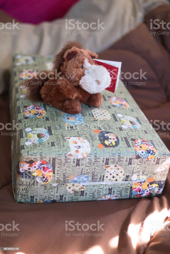 Donkey doll on gift box in bedroom, surprise concept stock photo