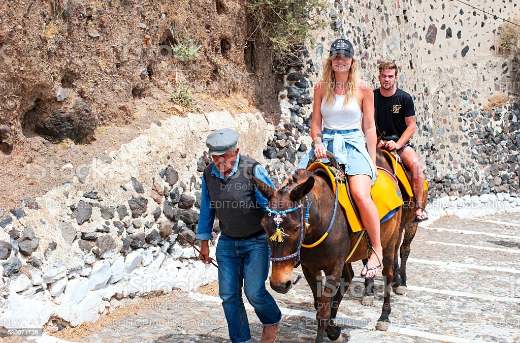 Donkey ride on on Santorini stock photo