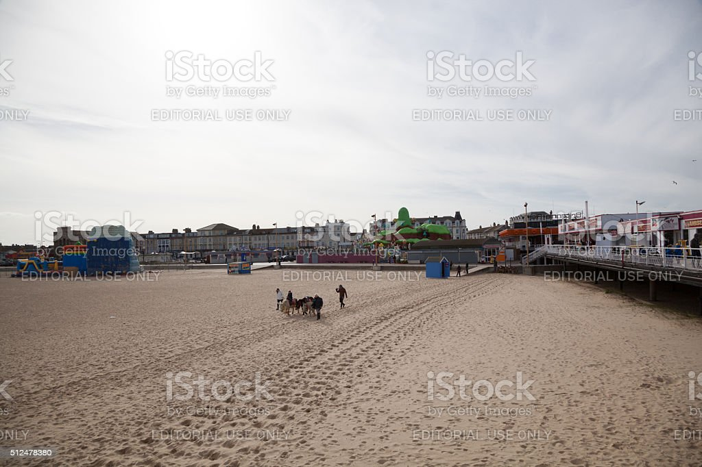 Donkey rides and amusement pier in Great Yarmouth Norfolk England stock photo