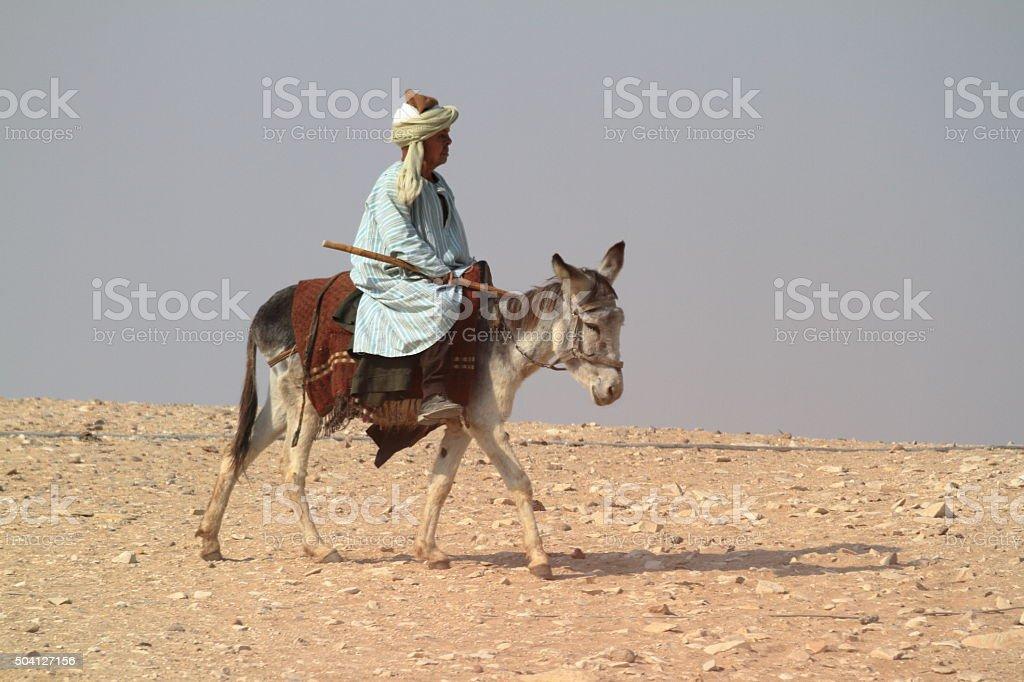 Donkey riding in the Sahara stock photo