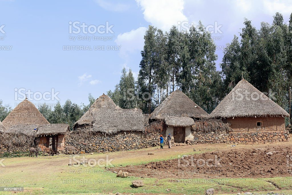 Donkeys and women-walled settlement of the Oromo people-Ethiopia. 0524 stock photo
