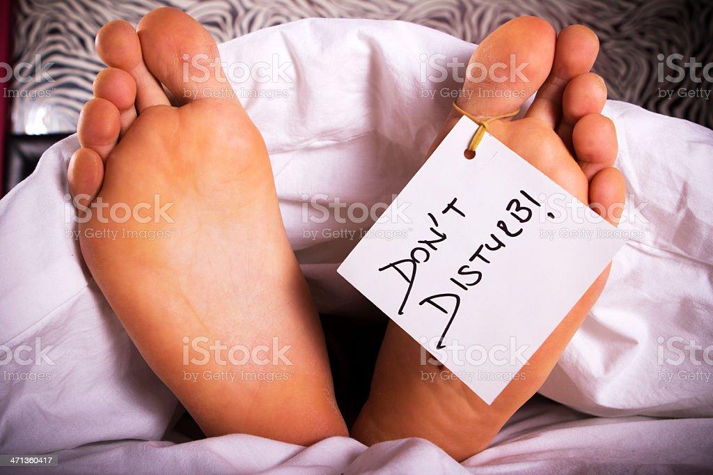 Don't Disturb! stock photo