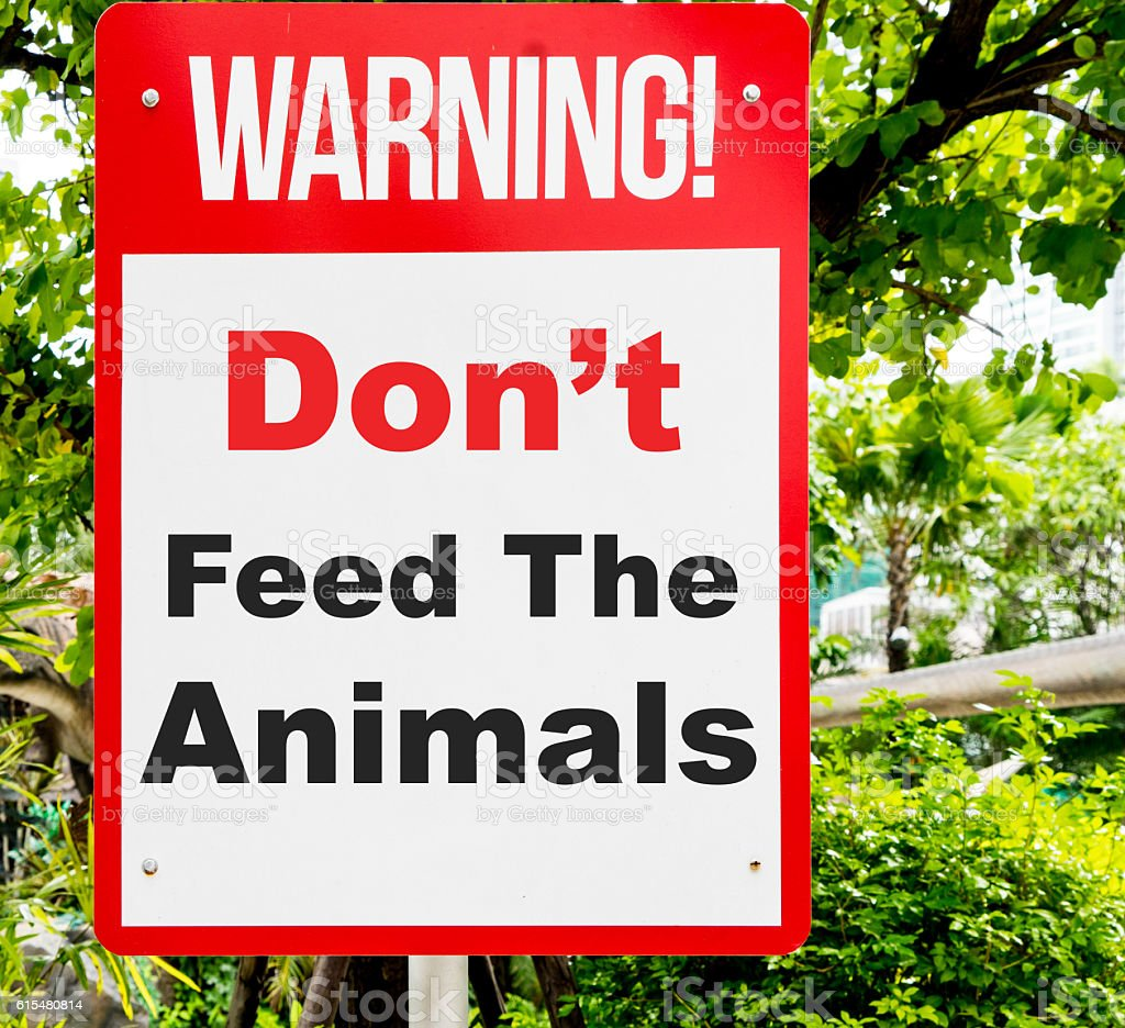 Don't feed the animal warning sign with nature background. stock photo