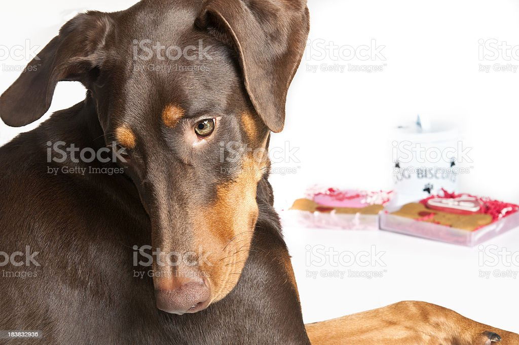Don't Look stock photo