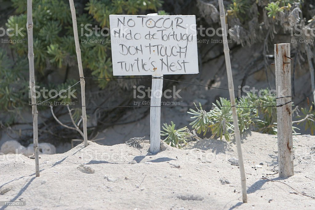 Don't touch turtle's nest royalty-free stock photo