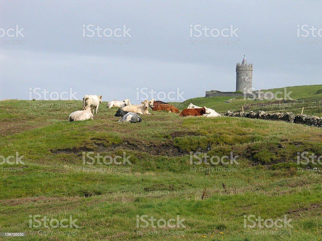 Doonagore Castle royalty-free stock photo