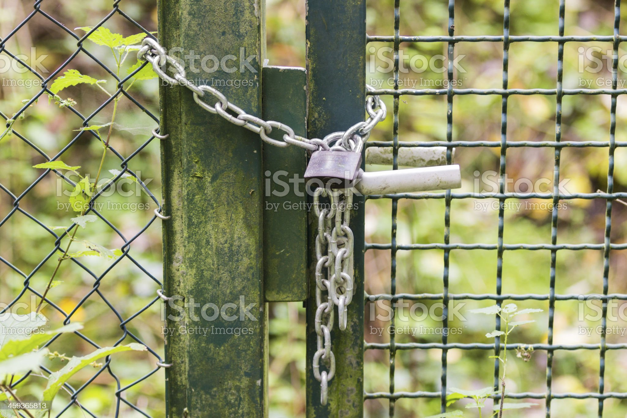 Door Chain Lock Outside royalty-free stock photo