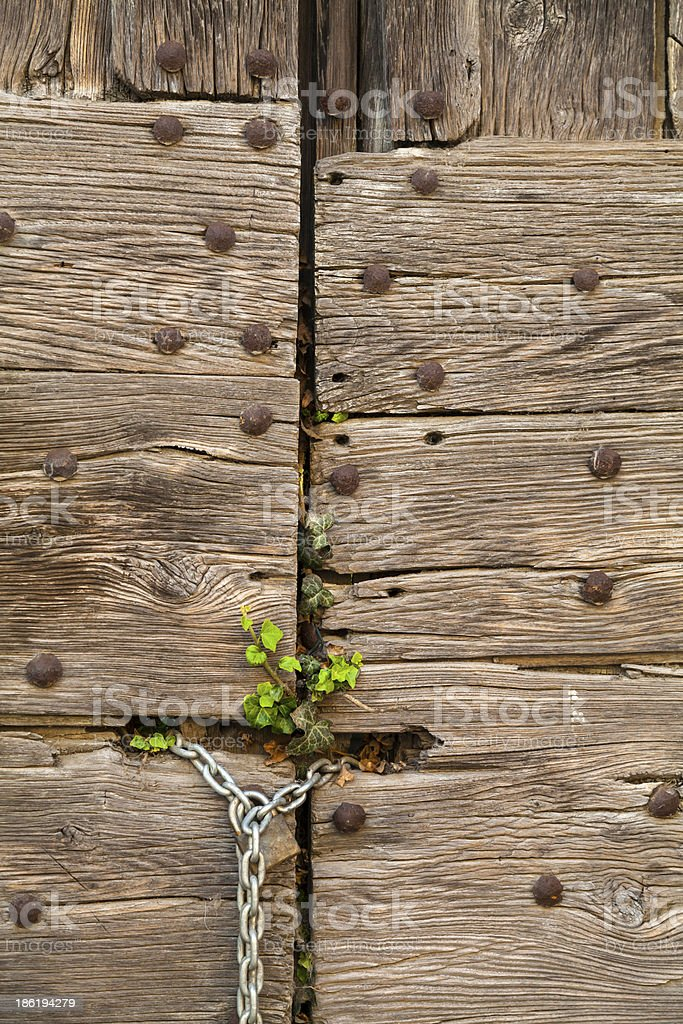 Door closed whit green grass royalty-free stock photo