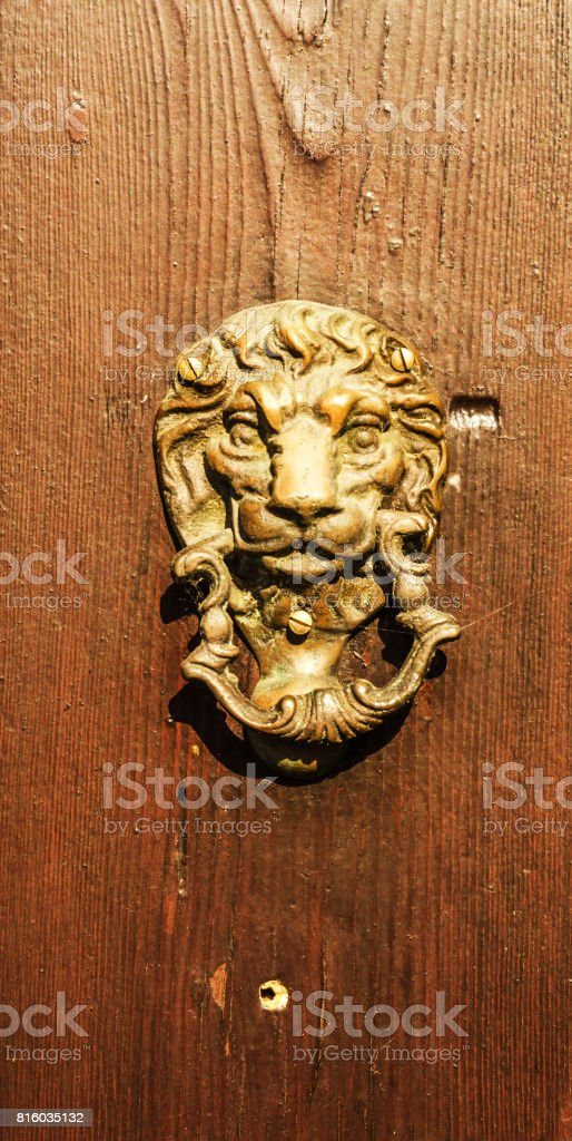 Door with brass knocker in the shape of a lion's head, beautiful entrance to the house stock photo